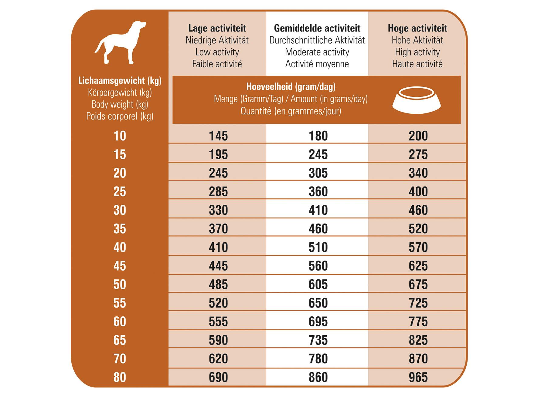Ration journalière des croquettes hypoallergéniques pour chien